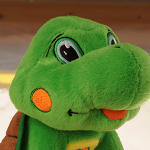 "MBS Partners with IC Orphans— Hooshga the ""Good News Turtle"" Captures Our Hearts"
